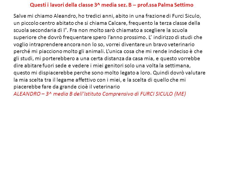 Questi i lavori della classe 3^ media sez. B – prof.ssa Palma Settimo