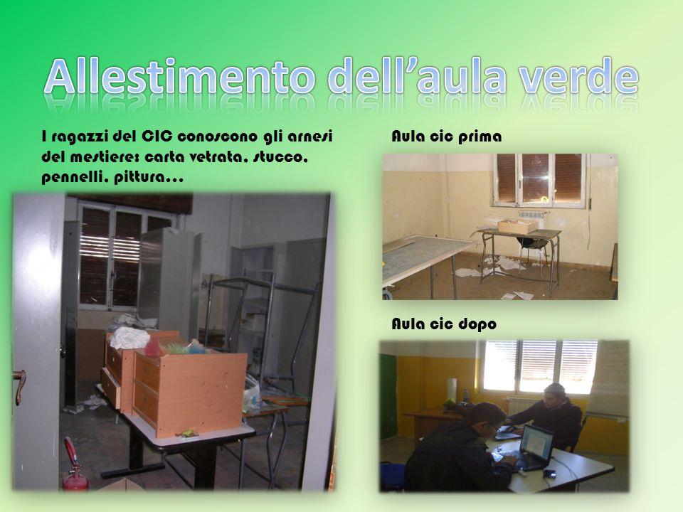 Allestimento dell'aula verde