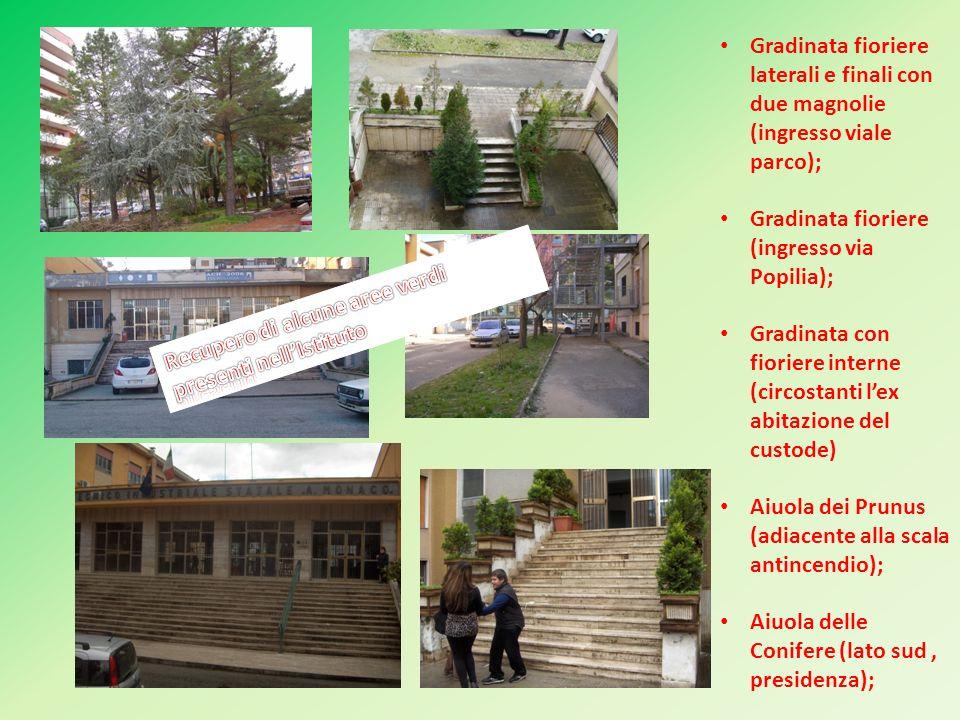 Gradinata fioriere laterali e finali con due magnolie (ingresso viale parco);