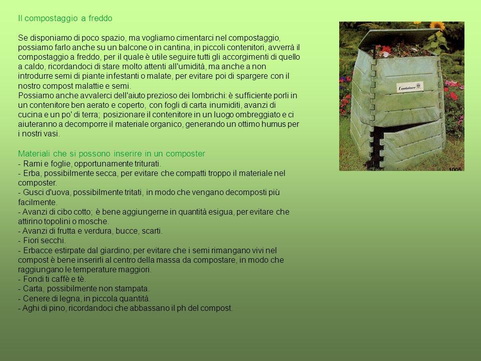 Il compostaggio a freddo Se disponiamo di poco spazio, ma vogliamo cimentarci nel compostaggio, possiamo farlo anche su un balcone o in cantina, in piccoli contenitori, avverrà il compostaggio a freddo, per il quale è utile seguire tutti gli accorgimenti di quello a caldo, ricordandoci di stare molto attenti all umidità, ma anche a non introdurre semi di piante infestanti o malate, per evitare poi di spargere con il nostro compost malattie e semi. Possiamo anche avvalerci dell aiuto prezioso dei lombrichi: è sufficiente porli in un contenitore ben aerato e coperto, con fogli di carta inumiditi, avanzi di cucina e un po di terra; posizionare il contenitore in un luogo ombreggiato e ci aiuteranno a decomporre il materiale organico, generando un ottimo humus per i nostri vasi.