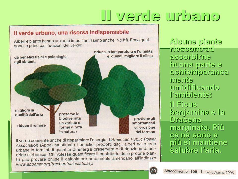 Il verde urbano Alcune piante riescono ad assorbirne buona parte e contemporaneamente umidificando l'ambiente: