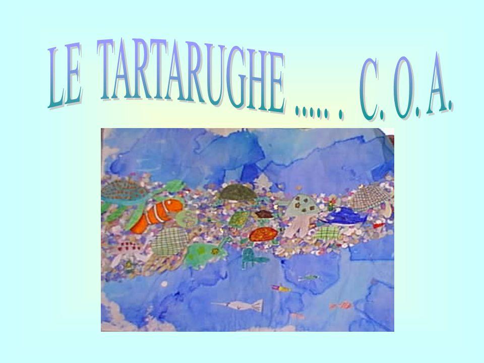 LE TARTARUGHE ..... . C. O. A.