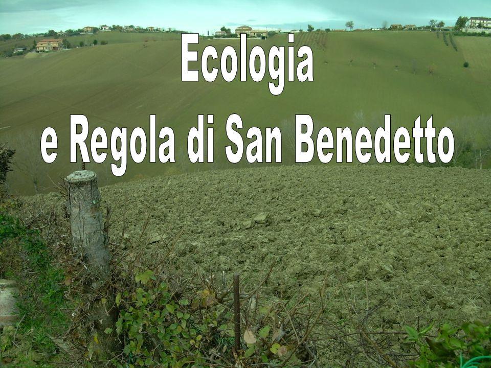 e Regola di San Benedetto