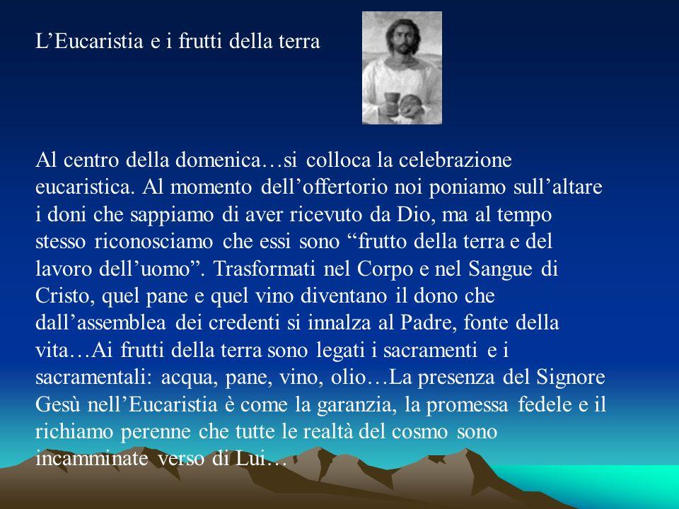 L'Eucaristia e i frutti della terra