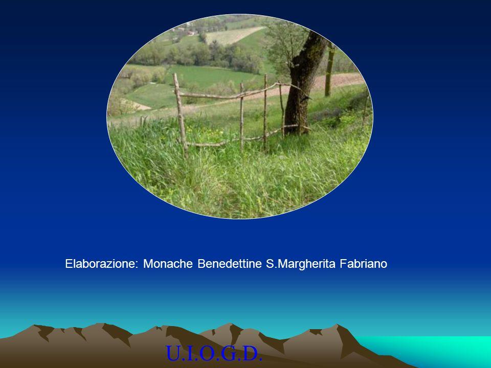 Elaborazione: Monache Benedettine S.Margherita Fabriano