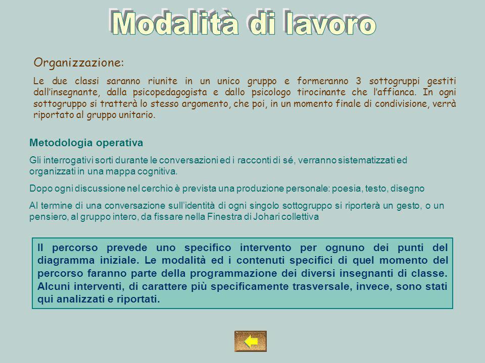 Modalità di lavoro Organizzazione: Metodologia operativa
