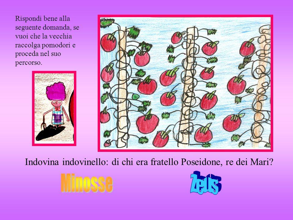 Rispondi bene alla seguente domanda, se vuoi che la vecchia raccolga pomodori e proceda nel suo percorso.