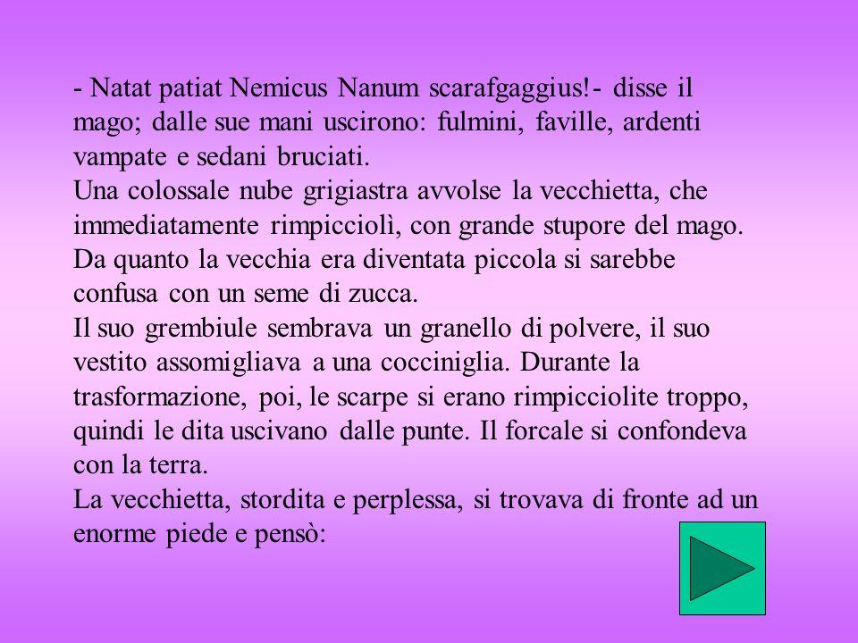 - Natat patiat Nemicus Nanum scarafgaggius