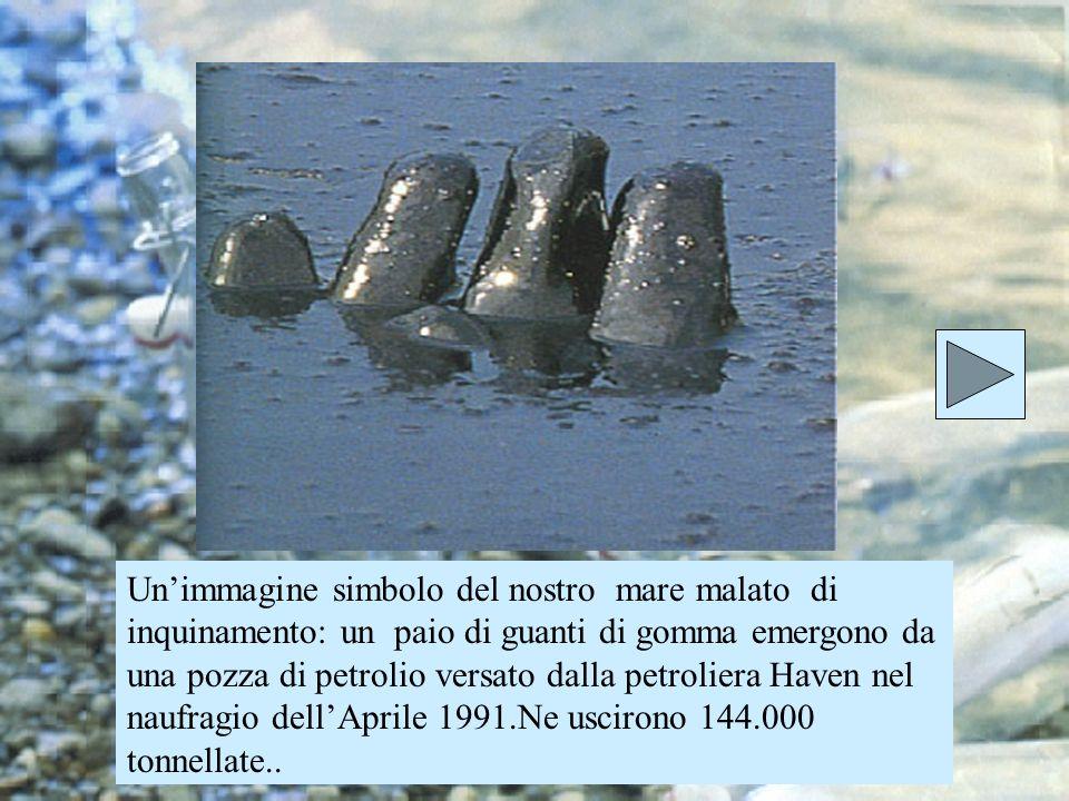 Un'immagine simbolo del nostro mare malato di inquinamento: un paio di guanti di gomma emergono da una pozza di petrolio versato dalla petroliera Haven nel naufragio dell'Aprile 1991.Ne uscirono 144.000 tonnellate..