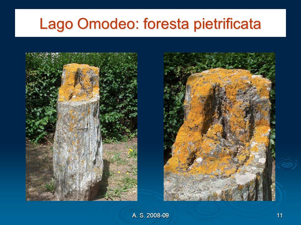 Lago Omodeo: foresta pietrificata