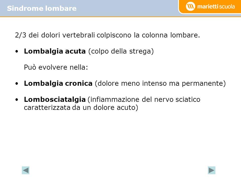 Sindrome lombare La Back School. 2/3 dei dolori vertebrali colpiscono la colonna lombare. Lombalgia acuta (colpo della strega)