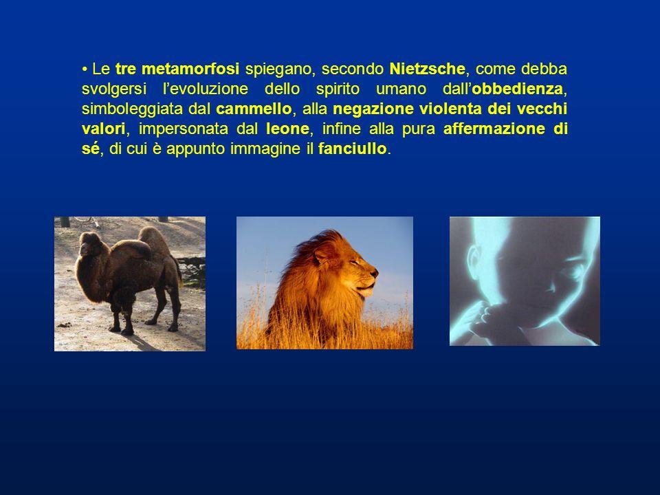 Le tre metamorfosi spiegano, secondo Nietzsche, come debba svolgersi l'evoluzione dello spirito umano dall'obbedienza, simboleggiata dal cammello, alla negazione violenta dei vecchi valori, impersonata dal leone, infine alla pura affermazione di sé, di cui è appunto immagine il fanciullo.