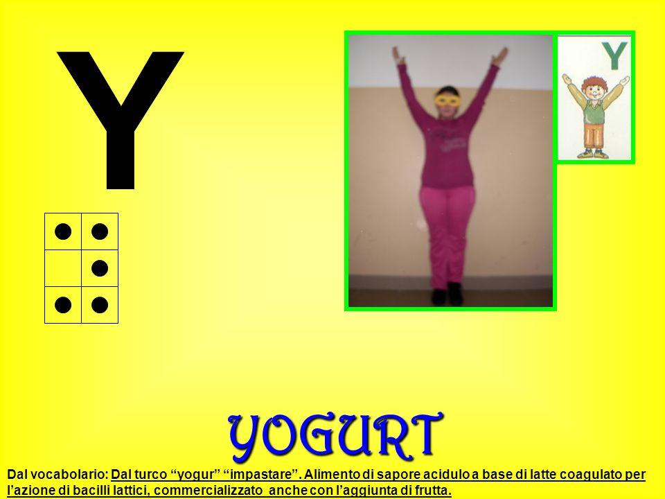 Y YOGURT.