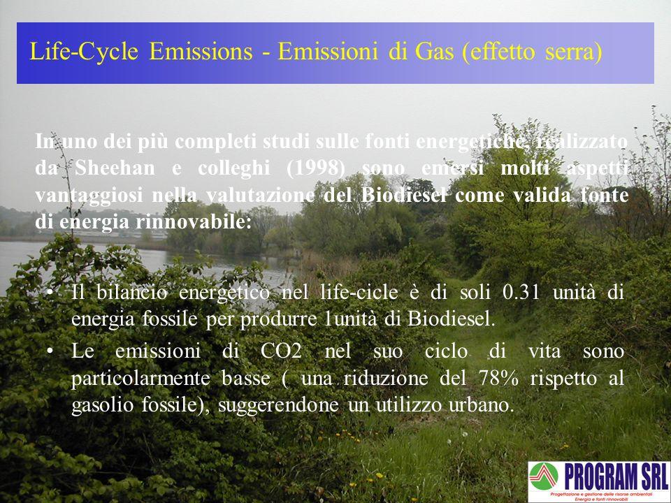 Life-Cycle Emissions - Emissioni di Gas (effetto serra)