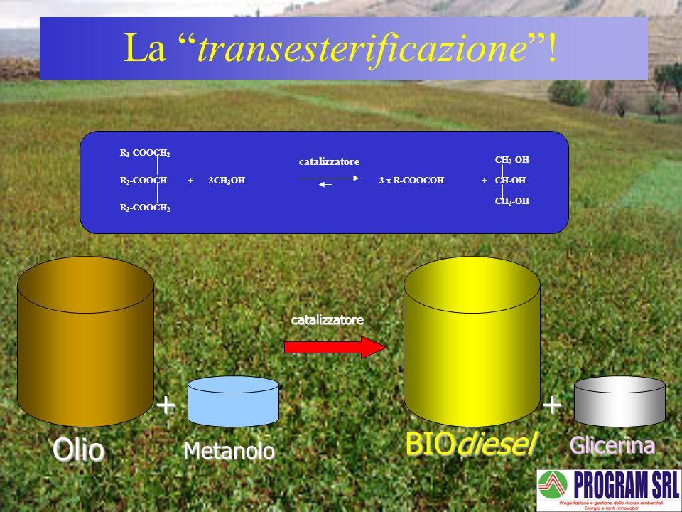 La transesterificazione !