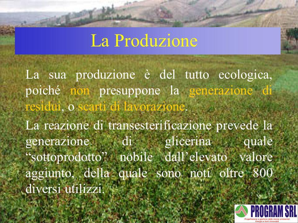 La ProduzioneLa sua produzione è del tutto ecologica, poiché non presuppone la generazione di residui, o scarti di lavorazione.