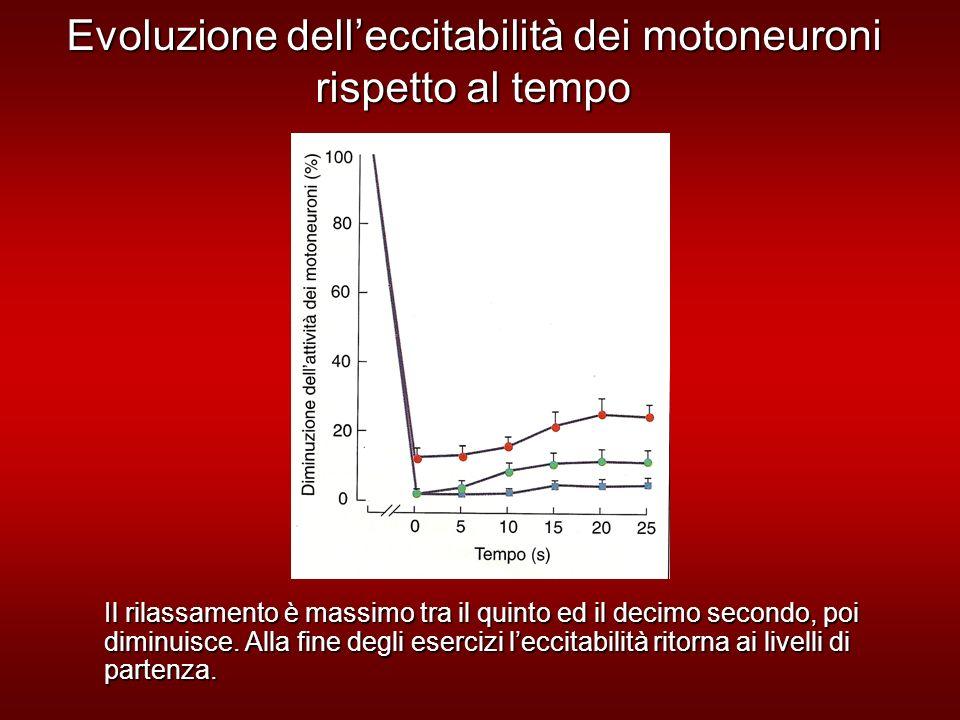 Evoluzione dell'eccitabilità dei motoneuroni rispetto al tempo