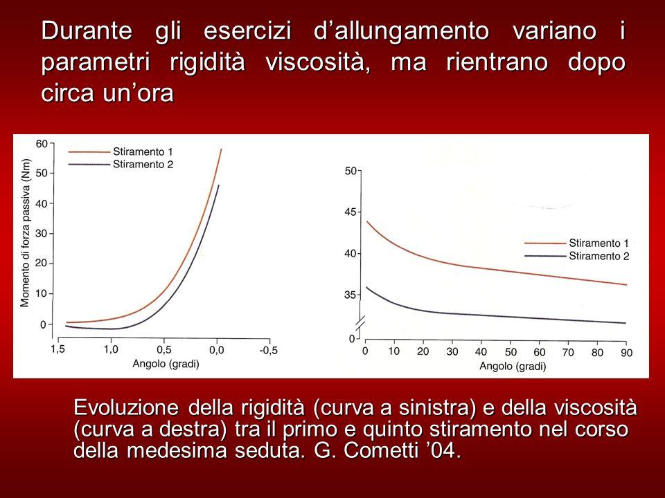 Durante gli esercizi d'allungamento variano i parametri rigidità viscosità, ma rientrano dopo circa un'ora