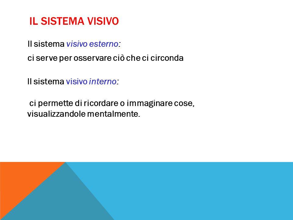 Il sistema visivo Il sistema visivo esterno: