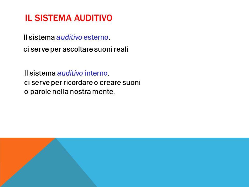 Il sistema auditivo Il sistema auditivo esterno: