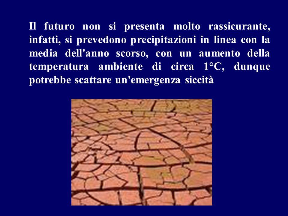 Il futuro non si presenta molto rassicurante, infatti, si prevedono precipitazioni in linea con la media dell anno scorso, con un aumento della temperatura ambiente di circa 1°C, dunque potrebbe scattare un emergenza siccità