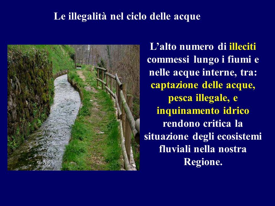 Le illegalità nel ciclo delle acque