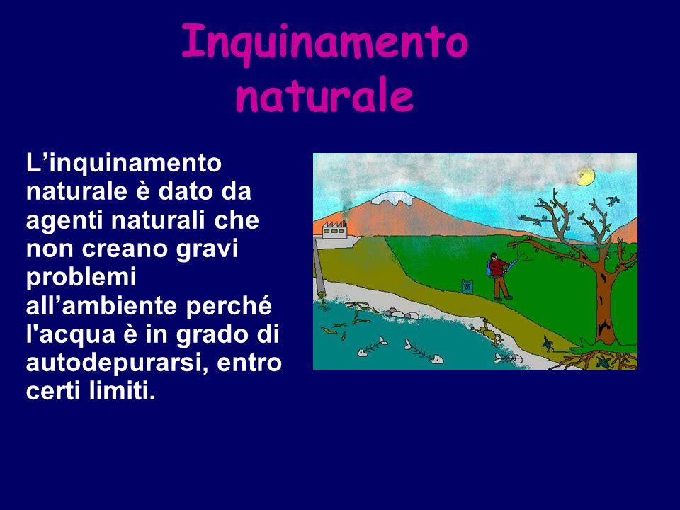 Inquinamento naturale