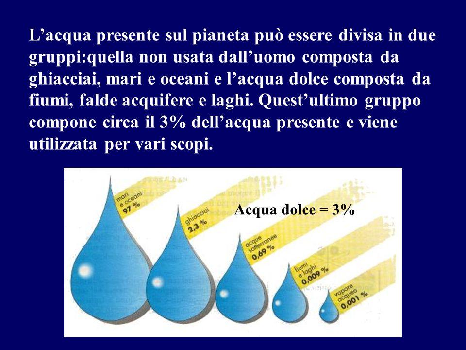 L'acqua presente sul pianeta può essere divisa in due gruppi:quella non usata dall'uomo composta da ghiacciai, mari e oceani e l'acqua dolce composta da fiumi, falde acquifere e laghi. Quest'ultimo gruppo compone circa il 3% dell'acqua presente e viene utilizzata per vari scopi.