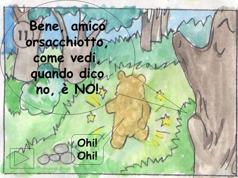 Bene, amico orsacchiotto, come vedi, quando dico no, è NO!