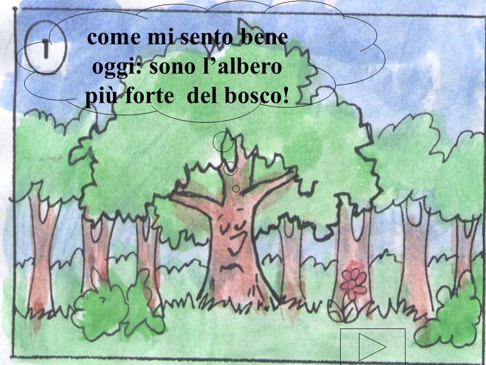come mi sento bene oggi: sono l'albero più forte del bosco!