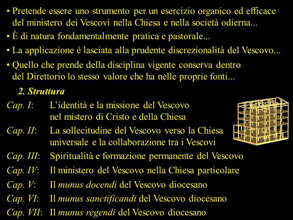 Pretende essere uno strumento per un esercizio organico ed efficace del ministero dei Vescovi nella Chiesa e nella società odierna...