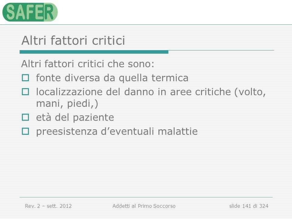 Altri fattori critici Altri fattori critici che sono: