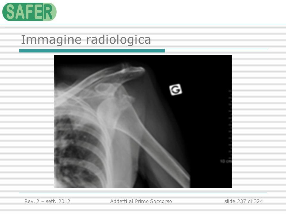 Immagine radiologica