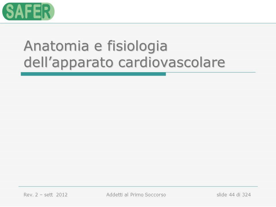 Anatomia e fisiologia dell'apparato cardiovascolare
