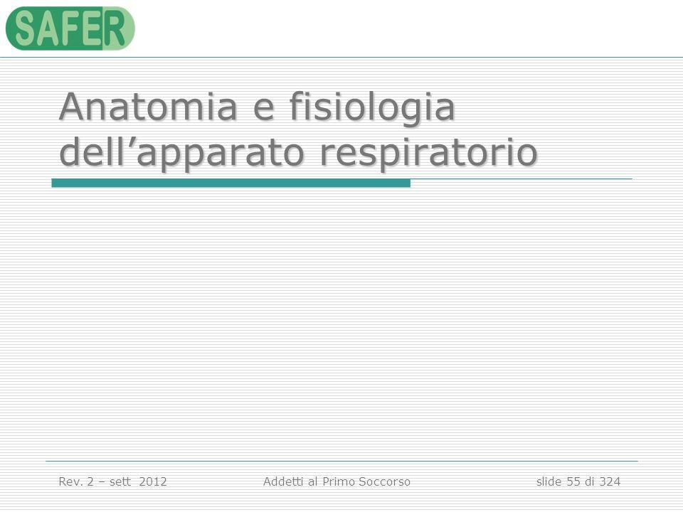 Anatomia e fisiologia dell'apparato respiratorio