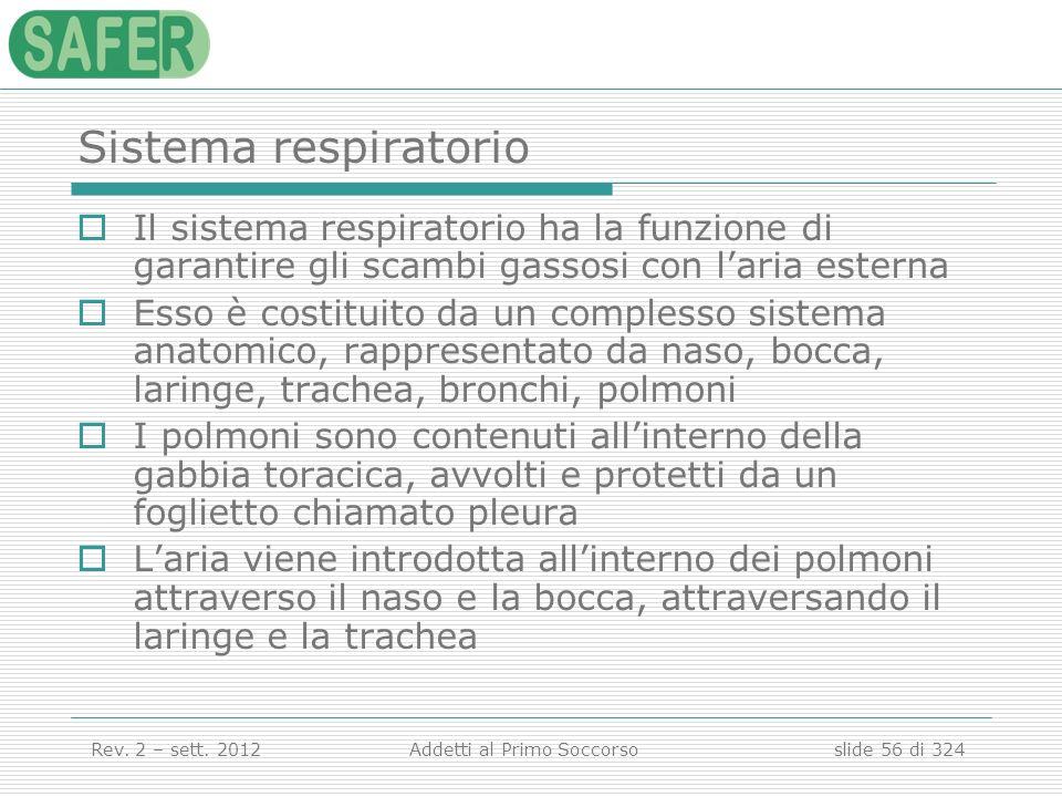 Sistema respiratorio Il sistema respiratorio ha la funzione di garantire gli scambi gassosi con l'aria esterna.