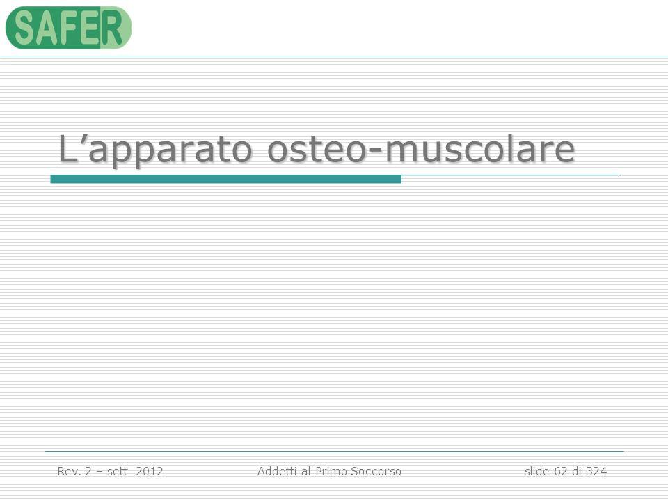 L'apparato osteo-muscolare