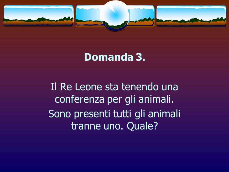 Il Re Leone sta tenendo una conferenza per gli animali.