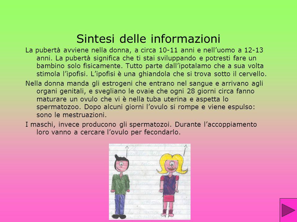 Sintesi delle informazioni