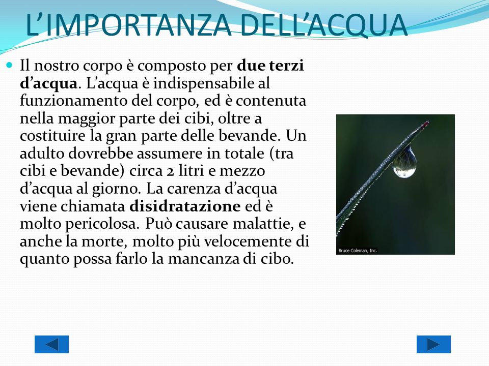 L'IMPORTANZA DELL'ACQUA