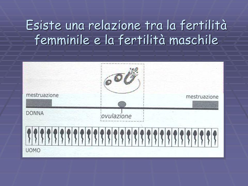 Esiste una relazione tra la fertilità femminile e la fertilità maschile
