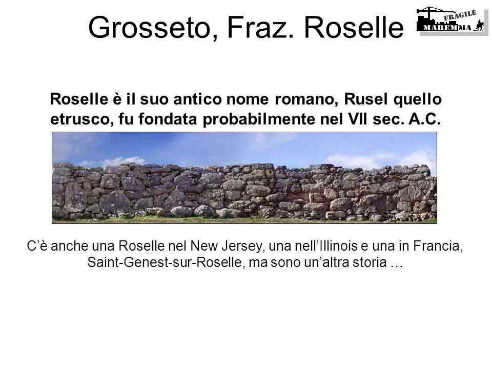 Grosseto, Fraz. RoselleRoselle è il suo antico nome romano, Rusel quello etrusco, fu fondata probabilmente nel VII sec. A.C.