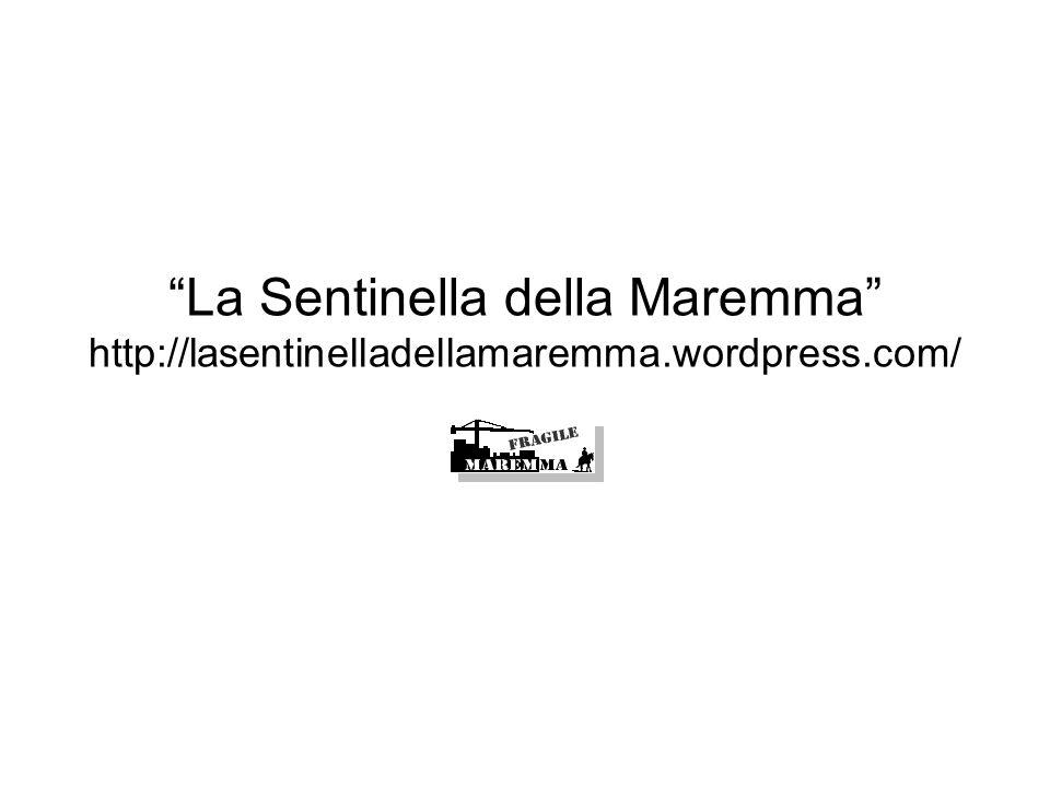 La Sentinella della Maremma http://lasentinelladellamaremma