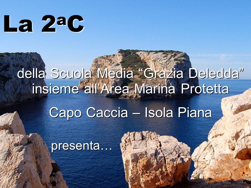 La 2aC della Scuola Media Grazia Deledda insieme all'Area Marina Protetta. Capo Caccia – Isola Piana.