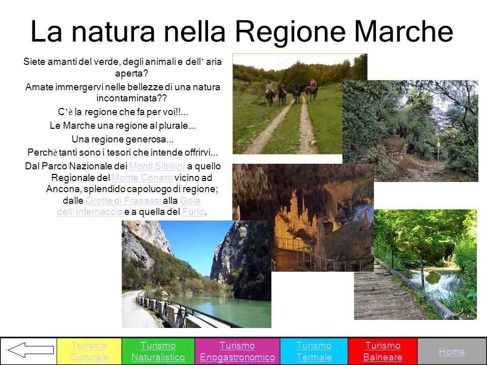 La natura nella Regione Marche