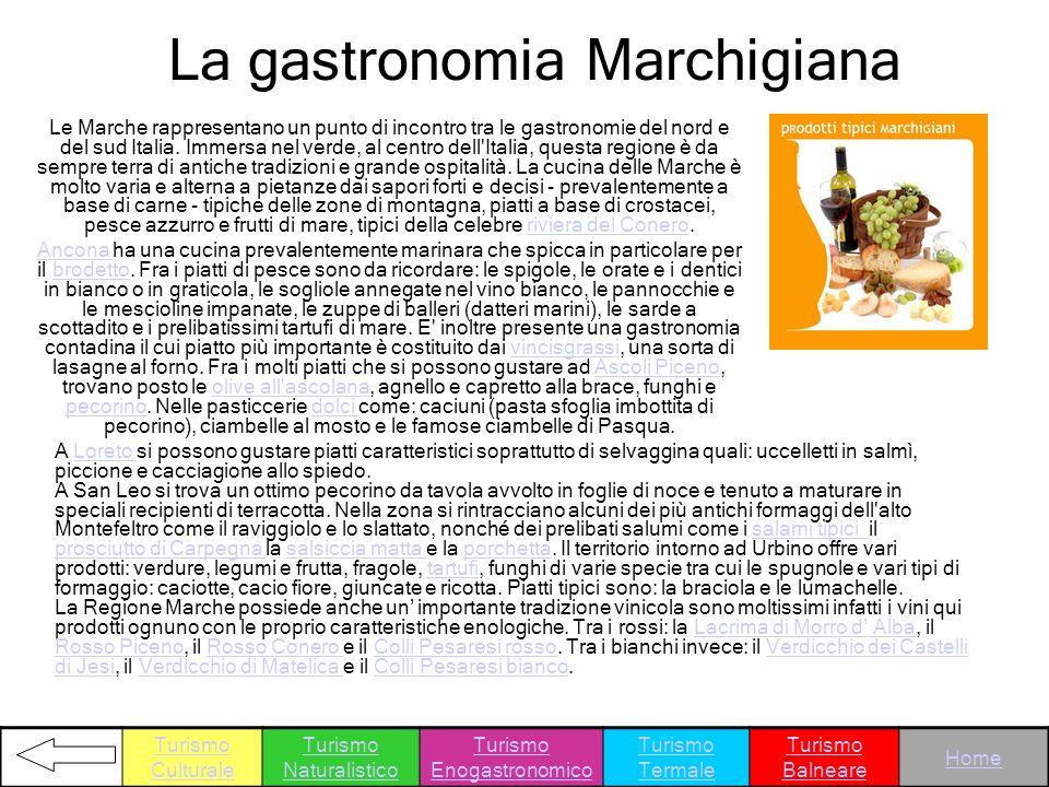 La gastronomia Marchigiana