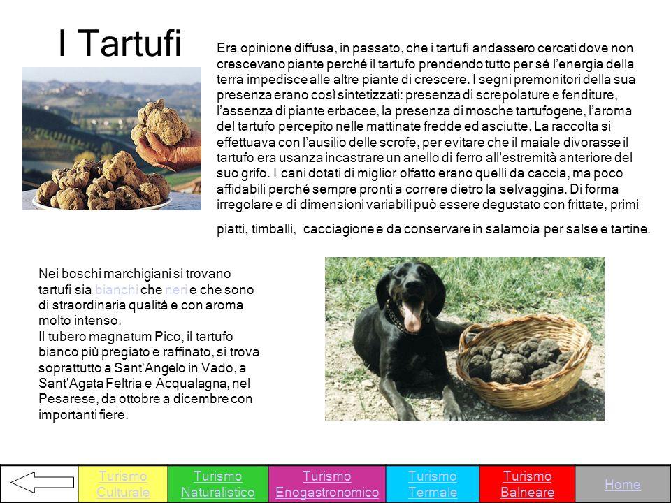 I Tartufi