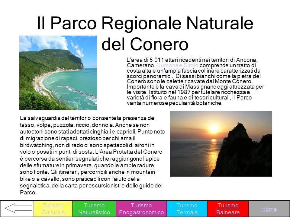 Il Parco Regionale Naturale del Conero