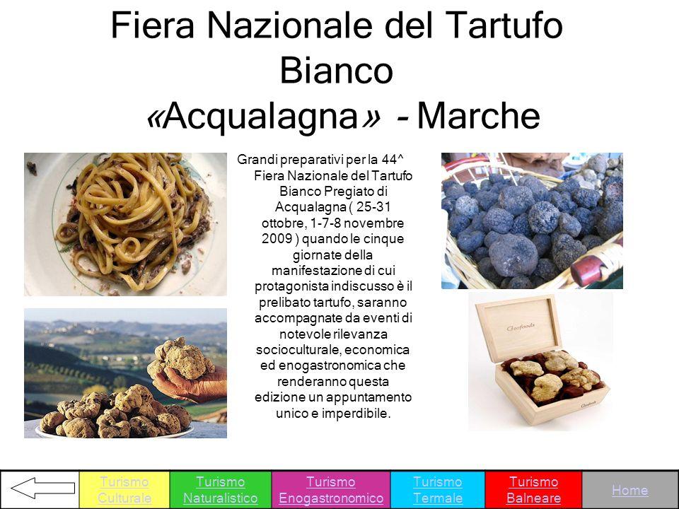 Fiera Nazionale del Tartufo Bianco «Acqualagna» - Marche