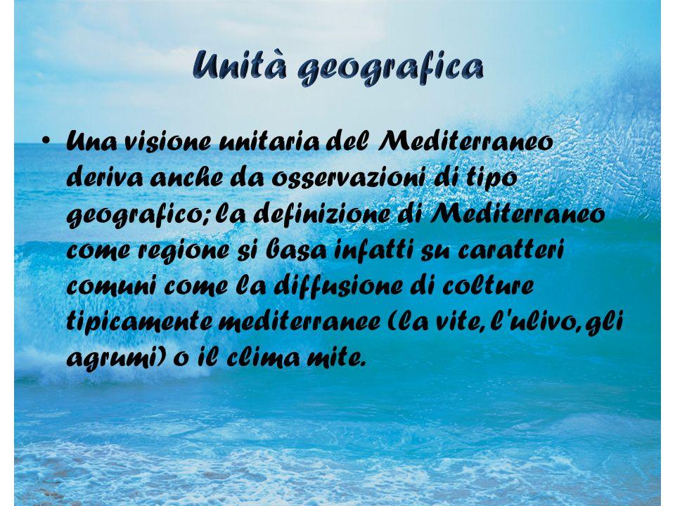Unità geografica